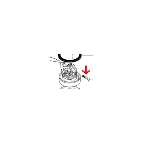 Charbon moteur S10-RS05 Cleanfix